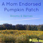 Fall on the Farm ~ Bloom's and Berries'