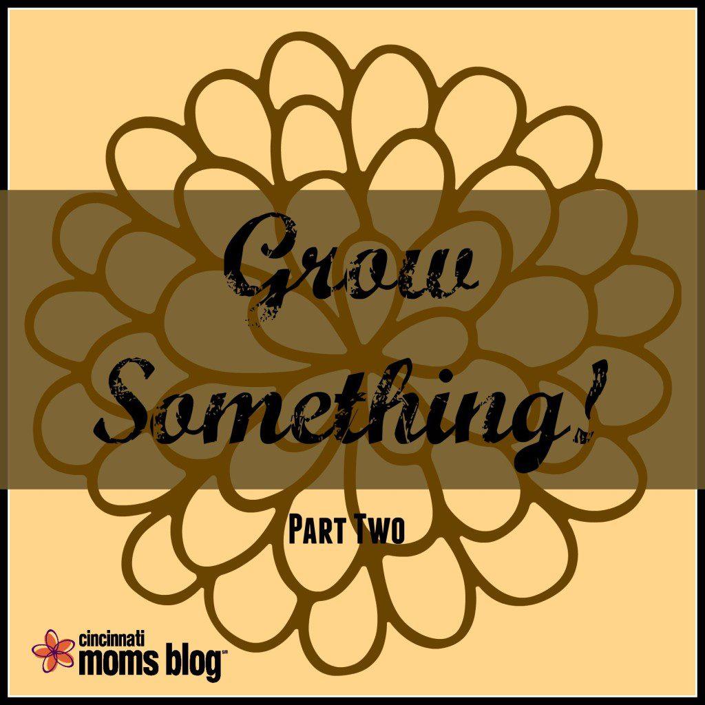 Grow Something! Part 2