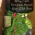 Why I am Excited About our CSA Produce Box