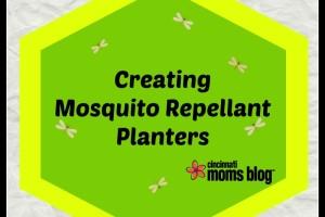 Mosquito Planer