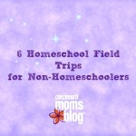 6 Homeschool Field Trips for Non-Homeschoolers