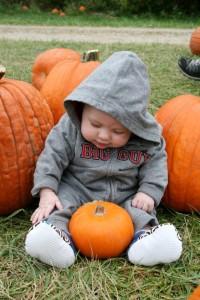Halloween Cincinnati Pumpkin