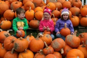 Halloween Cincinnati Pumpkins