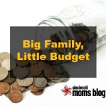 Big Family, Little Budget