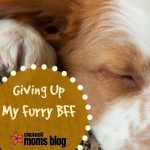 Giving Up My Furry BFF