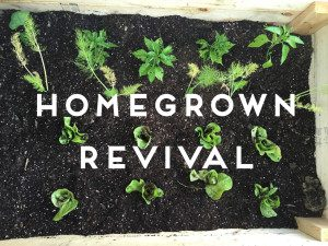 homegrown revival