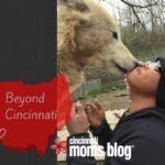 Beyond Cincinnati: Wolf Creek Habitat