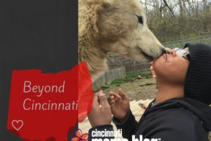Beyond Cincinnati-1