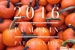 2016 pumpkin patch guide