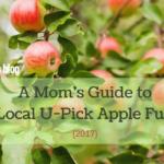A Mom's Guide to Local U-Pick Apple Fun {2017}