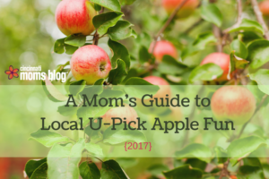 A Mom's Guide to Local U-Pick Apple Fun
