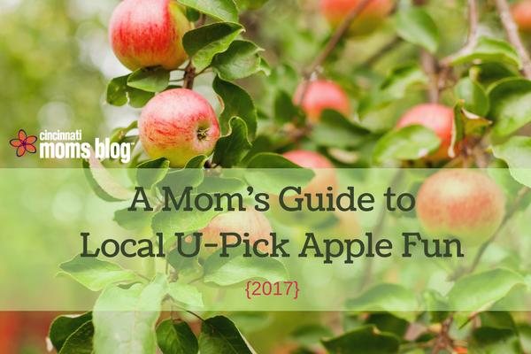A Mom's Guide to Local U-Pick Apple Fun