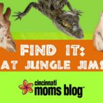 Find It at Jungle Jims! {A Scavenger Hunt with Printable}