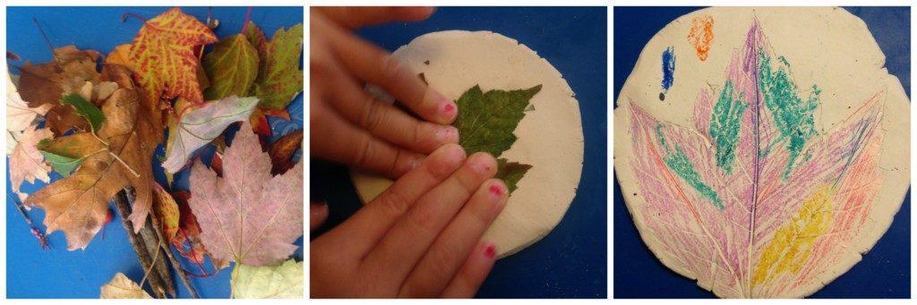 fossil-leaf