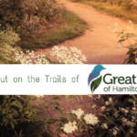 Let's Get Hiking with Great Parks of Hamilton County!