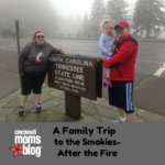 A Family Trip to the Smokies – After the Fire.