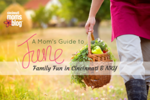 A Mom's Guide to