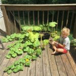 Sunlight, Water, and Love: Gardening with a Little One