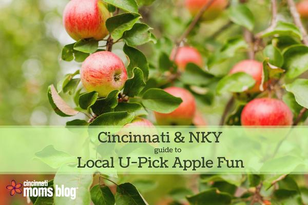Apple Orchards Cincinnati