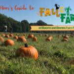 A Mom's Guide to Fall on the Farm at Blooms and Berries Farm Market