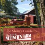 The Mom's Guide to Neltner's Farm Fall Festival