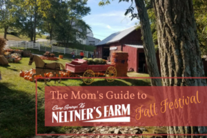 The Mom's Guide to (4)