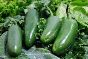 vegetable-3261365_1920 (1)