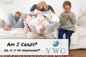 YWC- Am I Crazy (1)
