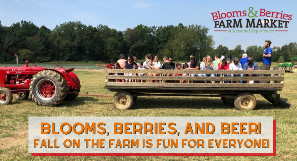 Blooms and Berries Fall on the Farm