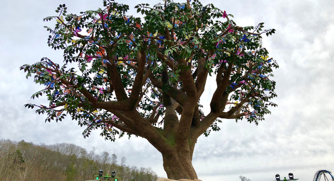 The Wildwood Tree lit with multi-colored butterflies at Dollywood's Wildwood Grove where you can visit with your Pre-K Imagination season pass