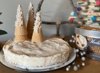 hudsonville ice cream cake